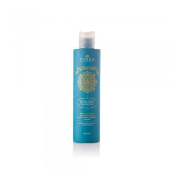 Hyalurvedic Shampoo Rivitalizzante - Amla, Althea, Hennè...